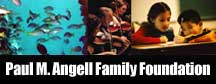 Paul M. Angell Family Foundation